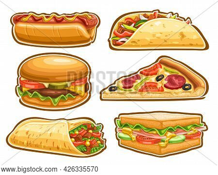 Vector Fast Food Set, Lot Collection Of Cut Out Illustrations Tasty Hot Dog With Mustard And Ketchup