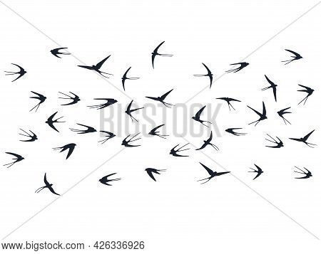 Flying Martlet Birds Silhouettes Vector Illustration. Migratory Martlets School Isolated On White.