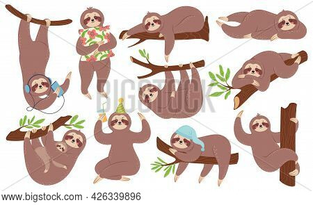 Cute Sloth. Happy Lazy Sloths Sleeping, Hanging On Branch, Listening To Music. Funny Slothful Animal