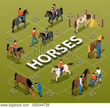 Horses Isometric Flowchart Demonstrated People With Disability Adults And Children Getting Equine As