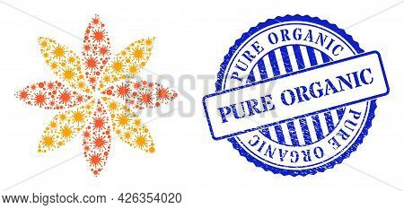 Virus Mosaic Flower Icon, And Grunge Pure Organic Seal Stamp. Flower Mosaic For Medical Images, And