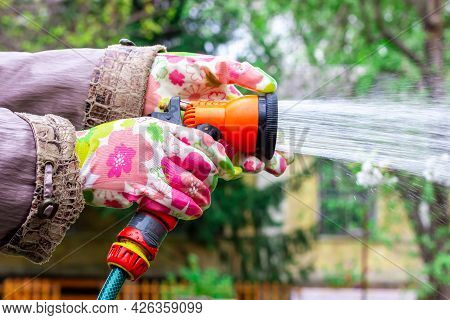 A Housewife Is Watering A Vegetable Garden. Plant Care. Sprayer For Garden Watering. Watering Gun.