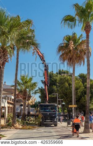 Colonia De Sant Jordi, Spain; July 02 2021: Pruning Palm Trees On The Seafront Promenade Of The Mall