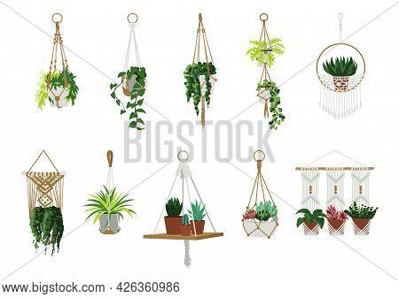 Macrame Hangers. Indoor Home And Office Plants In Garden Hanging Flowerpots. Scandinavian Interior D