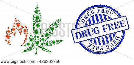 Virulent Collage Hot Cannabis Icon, And Grunge Drug Free Seal Stamp. Hot Cannabis Collage For Breako