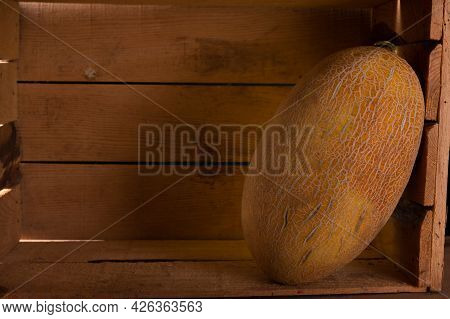 Yellow Melon In A Wooden Box. Melon In The Cellar. Low Light.