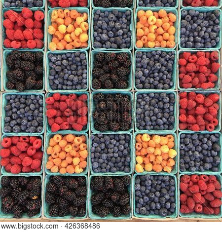 Dried Fruit Is Fruit From Which The Majority Of The Original Water Content Has Been Removed Either N