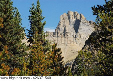 A Wonderful View Of A High Peak In The Canadian Rocky Mountains Through Colorful Evergreen Trees In