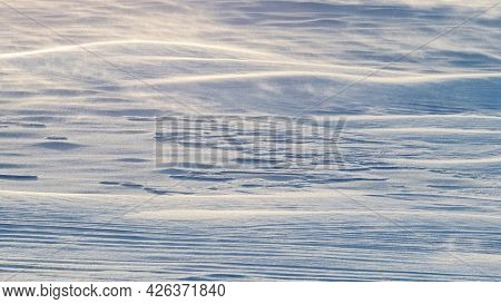 Snowy Background, Snow-covered Wavy Surface Of The Earth After A Blizzard In The Morning In The Sunl