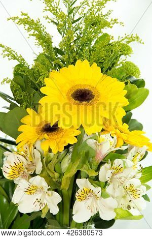 Yellow Gerbera African Daisy And Alstroemeria Asteraceae Peruvian Lily