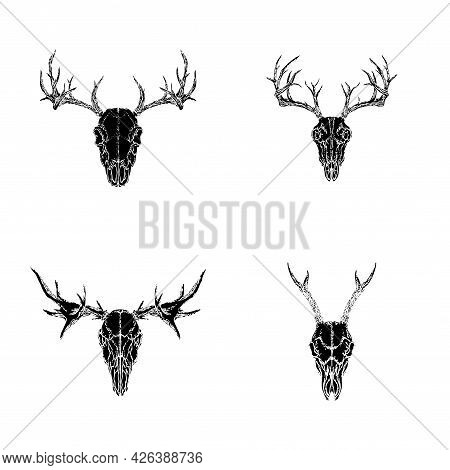 Vector Set Of Hand Drawn Skulls Of Horned Animals: Roe Deer, Stag And Moose On White Background. Bla