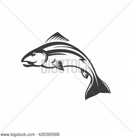 Fish Atlantic Salmon Isolated Monochrome Icon. Vector Char Grayling Whitefish Fishing Sport Trophy.
