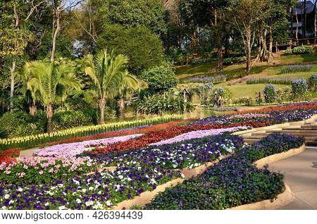 Chiang Rai Province, Thailand - February 18, 2019: Doi Tung Royal Villa And Mae Fah Luang Garden. Ma