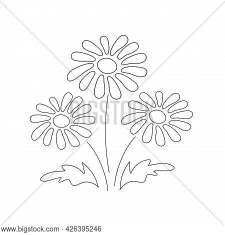 Spring Dandelions Bouquet Contour Vector Illustration. Botanical Decoration. Summer Garden Icon. Iso