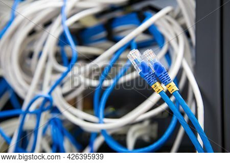 Close-up Rj45 Head Of Utp Lan Network Cable And Lots Of Ethernet Cables Background For Connect Compu