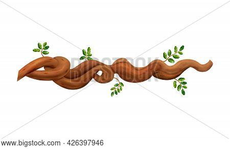 Tropical Rainforest Brown Liana With Small Green Leaves Realistic Vector Illustration