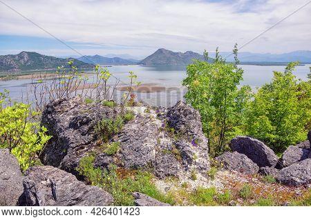 Montenegro, Skadar Lake National Park. View Of Coast Of Lake Skadar In Spring