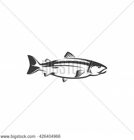 Herring Or Sea Humpback, Trout Fish Fishery Mascot, Freshwater Animal Isolated Monochrome Icon. Vect