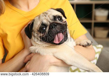 Woman With Cute Pug Dog At Home, Closeup. Animal Adoption
