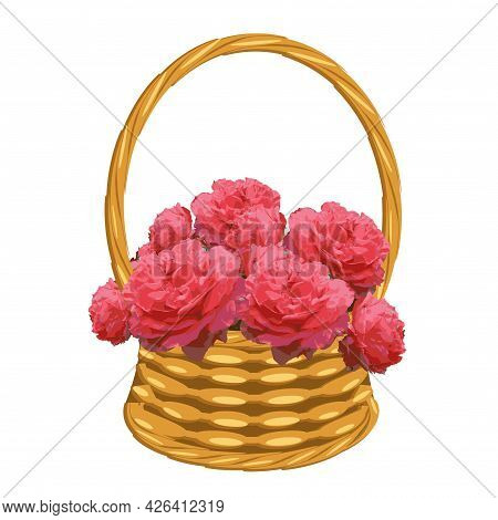 Coral Roses In Basket Of Vines Art Object Isolated For Web, For Print