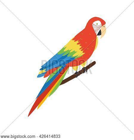 Beautiful Colorful Macaw Parrot Sitting On Tree Branch 3d Isometric Vector Illustration