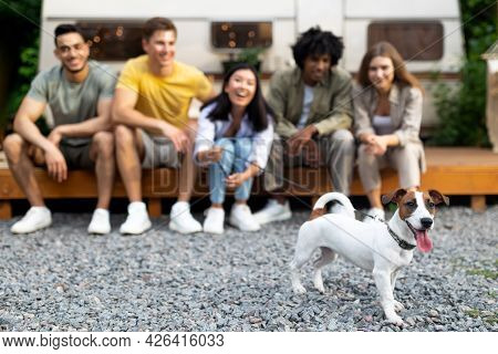 Group Of Multiracial Young Friends Sitting Near Rv With Their Cute Pet Dog, Spending Time Together O
