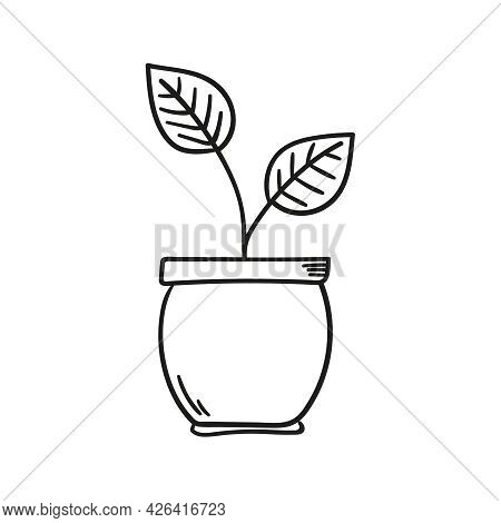 Flowerpot Vector Icon With Sprouts, Stem And Leaves. Doodle Style Illustration.