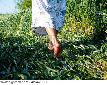 Close Up Of The Bare Feet Of A Girl Dressed In A Dress Who Is Walking On The Grass In The Evening