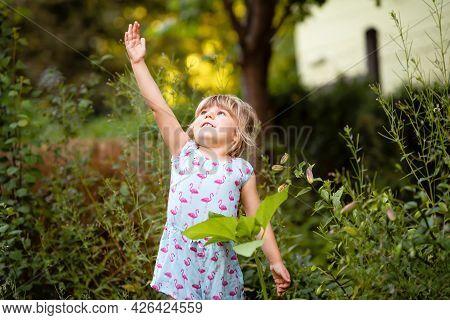 Little Preschool Girl Planting Seedlings Of Sunflowers In Domestic Garden. Toddler Child Learn Garde