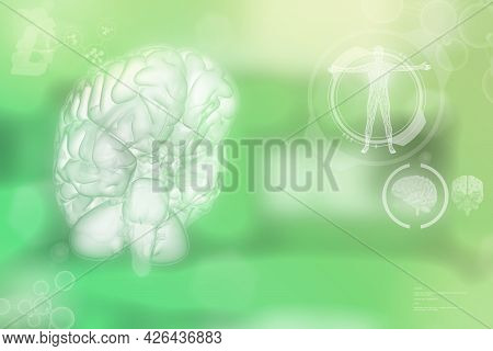 Medical 3d Illustration - Human Brain, Wisdom Discovery Concept - Highly Detailed Hi-tech Texture Or