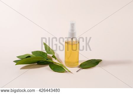 Home Made Sage Tonic In Spray Bottle. Beauty Treatment. Home Made Organic Cosmetic