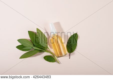 Home Made Sage Tonic In Spray Bottle. Beauty Treatment. Home Made Organic Cosmetic. Flat Lay, Top Vi