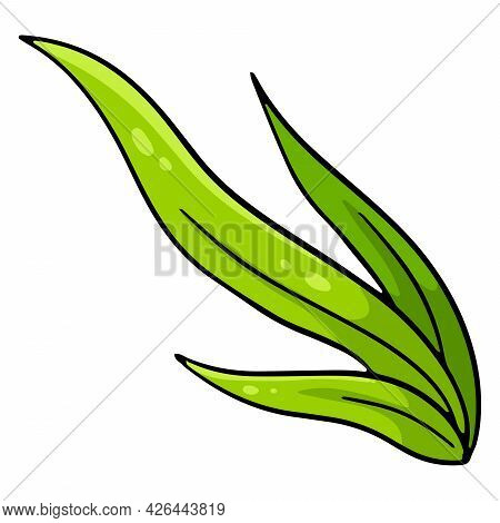 Bunch Of Green Fresh Grass. Long Leaves Of Grass. Cartoon Style. Vector Illustration For Design And