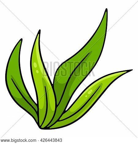 Bunch Of Green Fresh Grass. Long Leaves Of Grass. Cartoon Style.
