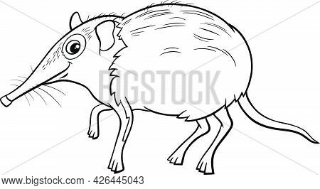 Black And White Cartoon Illustration Of Funny Elephant Shrew Comic Animal Character Coloring Book Pa