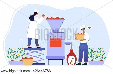Male And Female Characters Are Working On Ketchup Production Factory. Man And Woman Sorting, Washing