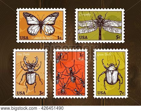 Set Of Postage Stamps With Insects Drawn In Sketch Style On Wooden Background Poster Vector Illustra