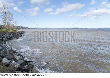 Rocky Shoreline At Tacoma In Washington With A Lawn On The Side
