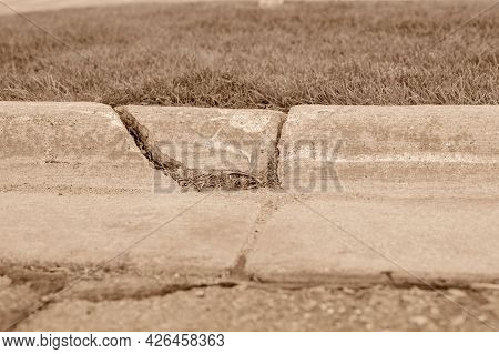 Cracked Road Siding With Grass Growing Through Gap