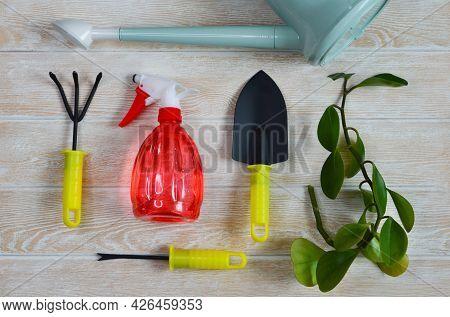 Watering Can, Shovel, Rake And Spray, Garden Tool Top View, The Concept Of Gardening, Home Garden An