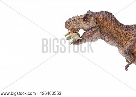 Tyrannosaurus Rex Dinosaurs Is Fhaving A Meal Isolated On White Background. Closeup Dinosaur And Mon