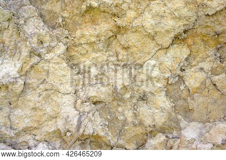 Abstract Light Brown Background Clay Soil Interspersed With Old Root System