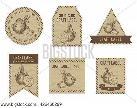 Craft Labels Vintage Design With Illustration Of Pitaya Stock Illustration