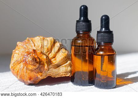 Cosmetic Oil And Shells . The Concept Of A Bottle Of Cosmetic Oil Without A Name. Cosmetology. Skin