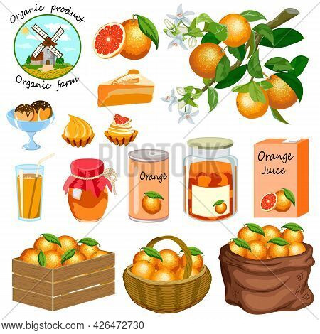 Vector Set With Oranges.oranges And Products From Them In A Color Vector Set.