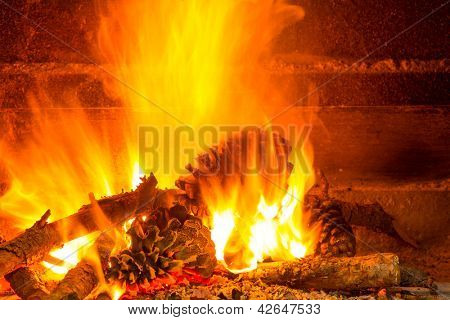 burning firewood in chimney with pine cones and fire