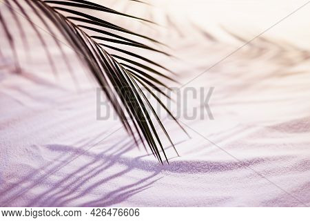 Beach With Wavy White Sand, Palm Leaf With Shadow In Golden And Pink Sunlight Of Sunrise, Copy Space