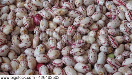 Crimson Beans Legumes Food