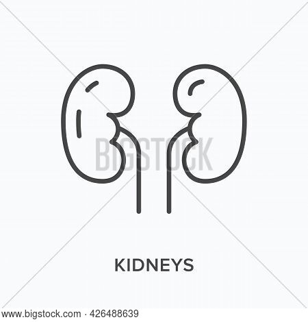 Kidneys Flat Line Icon. Vector Outline Illustration Of Human Organ. Black Thin Linear Pictogram For