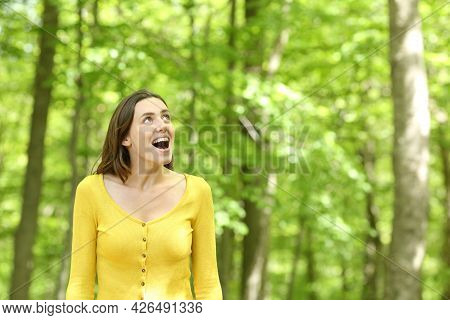 Amazed Woman Walking In A Green Forest Contemplating Views On Summer Vacation